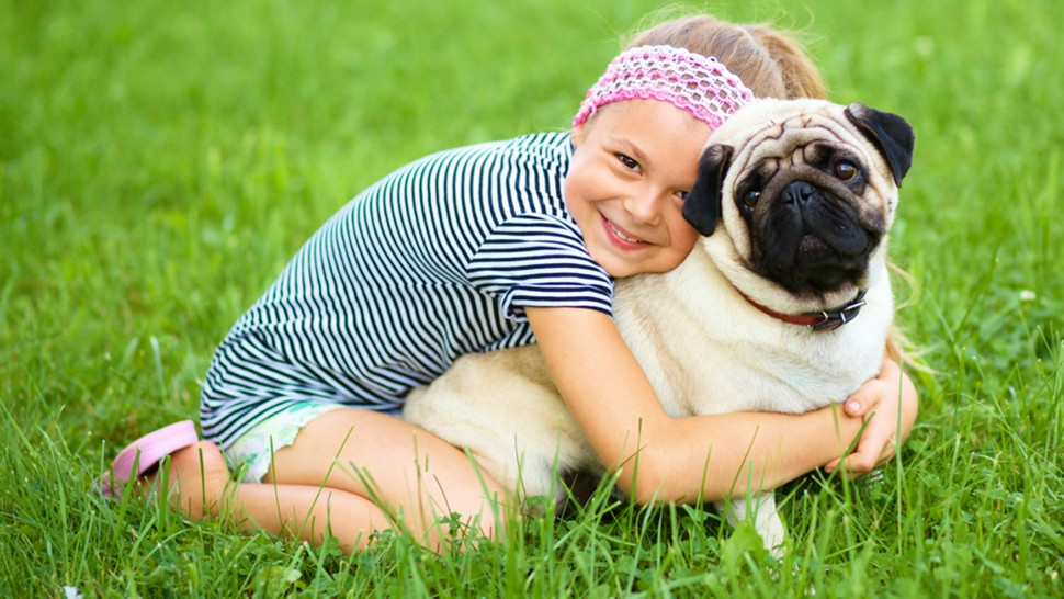 Little girl and her pug dog on green grass, outdoor shoot; Shutterstock ID 211689823; PO: TODAY.com